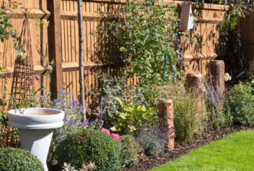 David Wilson Homes offer top tips for Spring gardens
