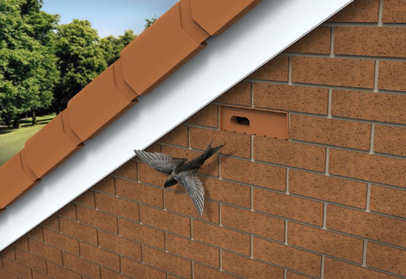 Swift Bricks Help Create Habitat For Nesting Birds 183 Phpd