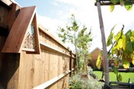 David Wilson Homes extends partnership with RSPB