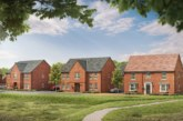 David Wilson Homes launches show homes at its Grove development