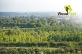 Woodfest arrives in the Midlands