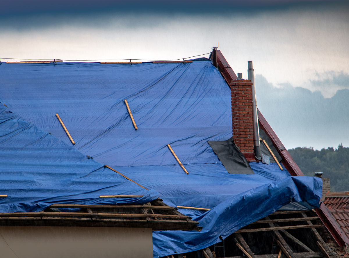 Builders declare climate emergency