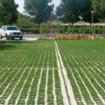Grass Concrete | The grass approach
