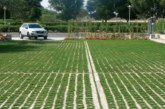 Grass Concrete | The grass approach