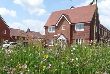 The housebuilding industry can lead the way on biodiversity