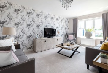 First homes to go on sale at new Colchester development